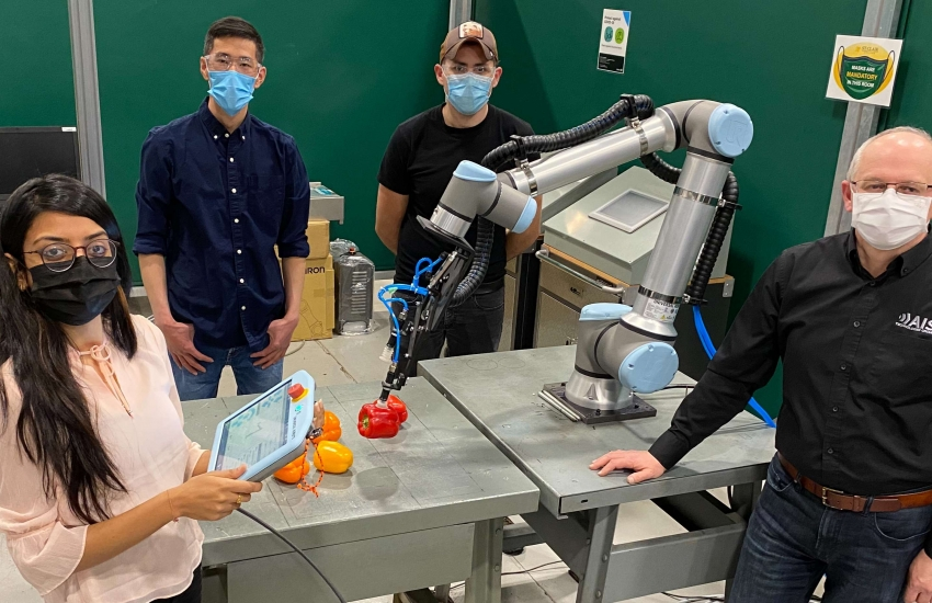 St. Clair students Khushboo Patel, left, Yu Wang and Ulises Martinez are working with adjunct professor Nick Dimitrov, right, to automate sweet pepper packaging for a Leamington greenhouse.